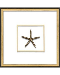 Gold Small Starfish Coastal Beach Wall Art in Black & Gold Frame