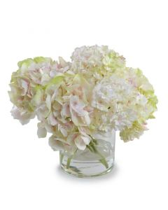 Hydrangea Arrangement in Clear Glass Cylinder Vase