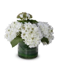Hydrangea Bud Arrangement Green and White in Glass Container