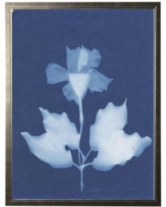 Indigo Impatien in Pewter Shadowbox Abstract Wall Art - Available in Three Different Sizes