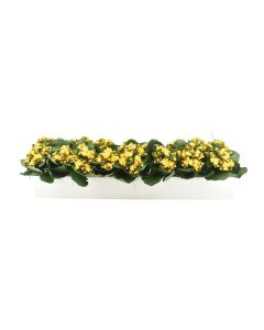 Large Yellow Faux Kalanchoes in Planter