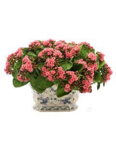 Magenta Faux Kalanchoe in White and Blue Vase