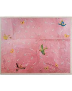 Natural Curiosities Paule Marrot Feathers and Birds on Pink Reproduction Wall Art With Acrylic Frame