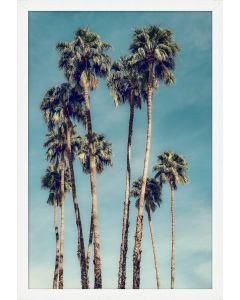 Palms in the Sky Wall Art