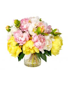 Pink, Yellow, and Cream Peonies Arranged in Glass Container
