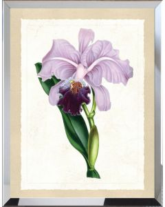 Purple Botanical Flower Framed Wall Art - Available in Variety of Sizes