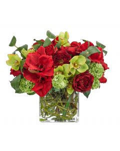 Red and Green Amaryllis Orchid Holiday Centerpiece Floral Arrangement