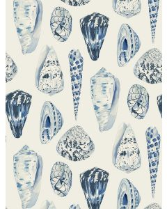 Scalamandre Coquina Wallcovering in Porcelain Blue & White