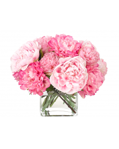 Pink Peony Faux Floral Arrangement in a Glass Cube