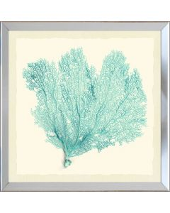 Sea Fan Framed Wall Art-Available in a Variety of Sizes