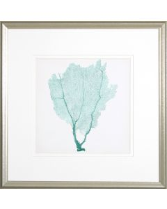 Sea Fan I Lithograph