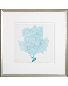 Sea Fan III Lithograph