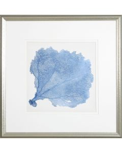 Sea Fan V Lithograph
