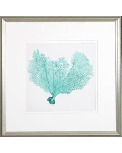 Sea Fan VI Lithograph