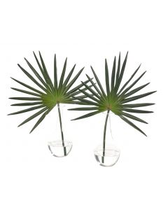 Set of 2 Faux Fan Palm Fronds in Glass Bud Vases