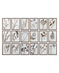 Set of 18 Floral Press Botanical Prints