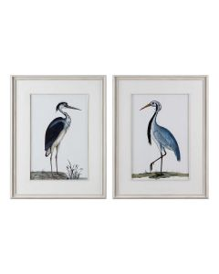Set of 2 Coastal Framed Bird Prints