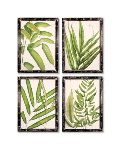 Set of 4 Framed Wall Art Tropical Leaf Prints
