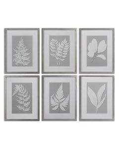 Set of 6 Elegant Botanical Two-Toned Framed Print