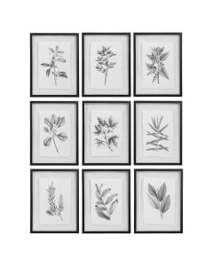 Set of 9 Modern Botanical Print with Deckled Edges - ON BACKORDER UNTIL MID-MARCH 2021
