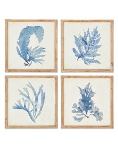 Set of Four Framed Watercolor Coral Wall Art