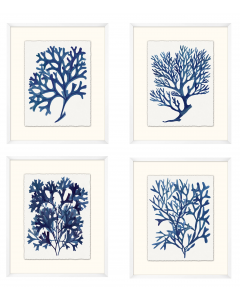 Set of Four Indigo Sea Life Framed Wall Art