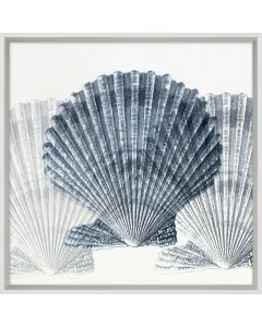 Indigo Shell Compilation 4 Framed Wall Art
