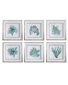 Set of Six Contemporary Coastal Coral Reef Framed Prints in Teal