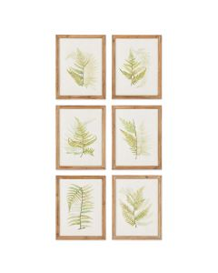 Set of Six Framed Ferns Botanical Wall Art - OUT OF STOCK