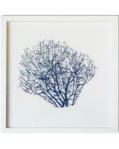 Small Painted Exotic Sea Fan Coastal Beach Wall Art in White Frame - 17 x 17 - Available in 18 Colors