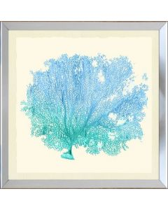 Teal and Blue Gradient Sea Fan III Framed Wall Art-Available in a Variety of Sizes