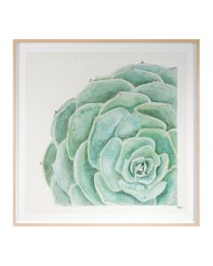 Tropical Botanicals 9 Framed Wall Art - Available in 2 Sizes