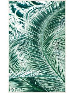 Natural Curiosities Tropicana 1 Wall Art with Optional Frame