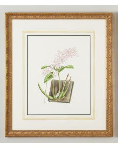 Watercolor Purple Flower Framed Wall Art