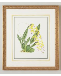 Watercolor Yellow Flower Framed Wall Art