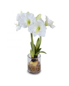 White Faux Amaryllis in Glass Cylinder