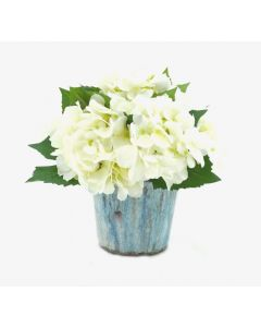 White Hydrangea Arrangement in Blue Stone Pot