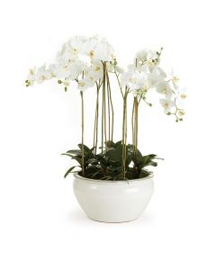 Barclay Butera White Phalaenopsis 36'' Silk Floral Arrangement in Ceramic Bowl
