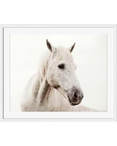 Wild White Horse Framed Wall Art - Available in Four Sizes - ON BACKORDER, CALL TO CONFIRM AVAILABILITY